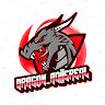 DRAGON_adiisreal